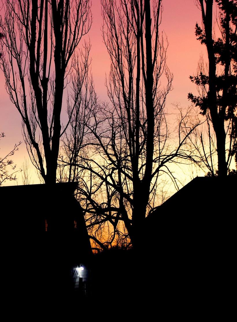 sunset212182