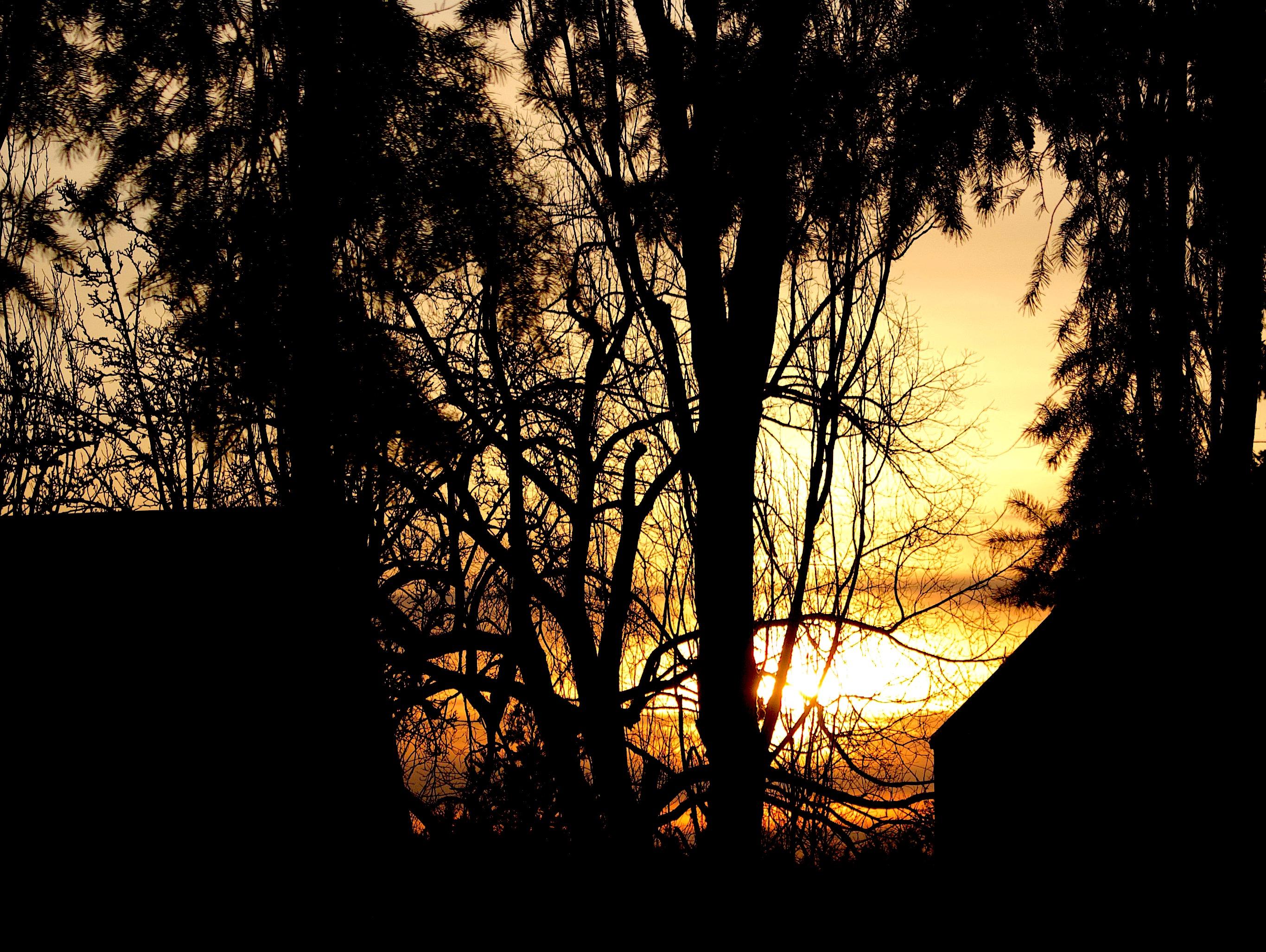 sunset219183