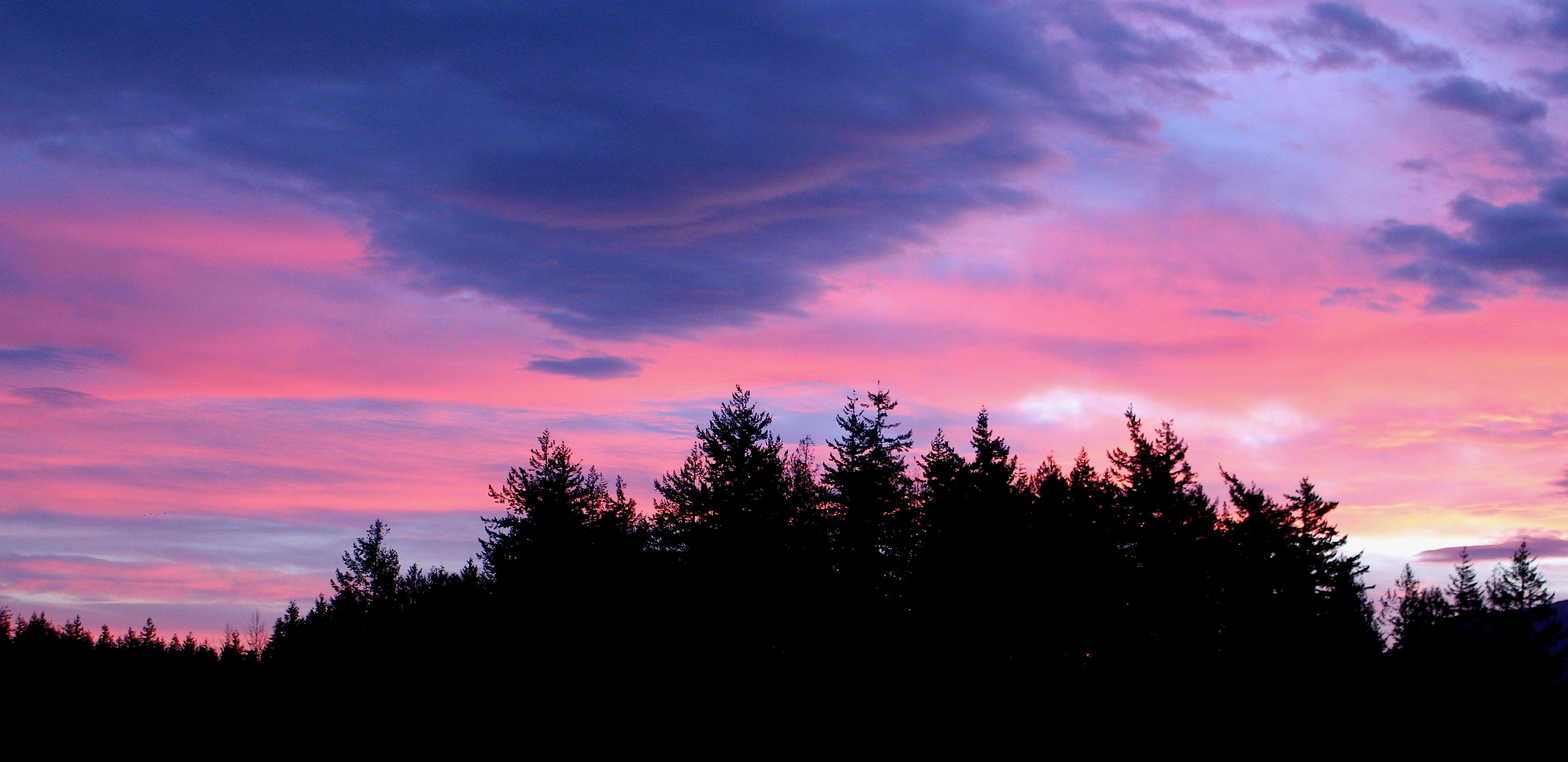 sunrise313184