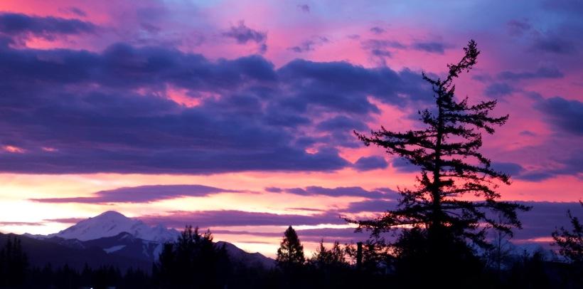 sunrise313187