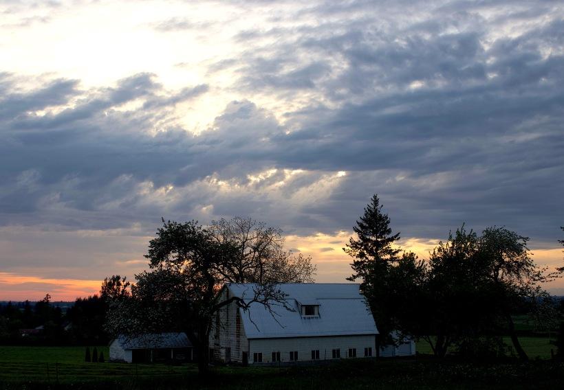 clouds23184