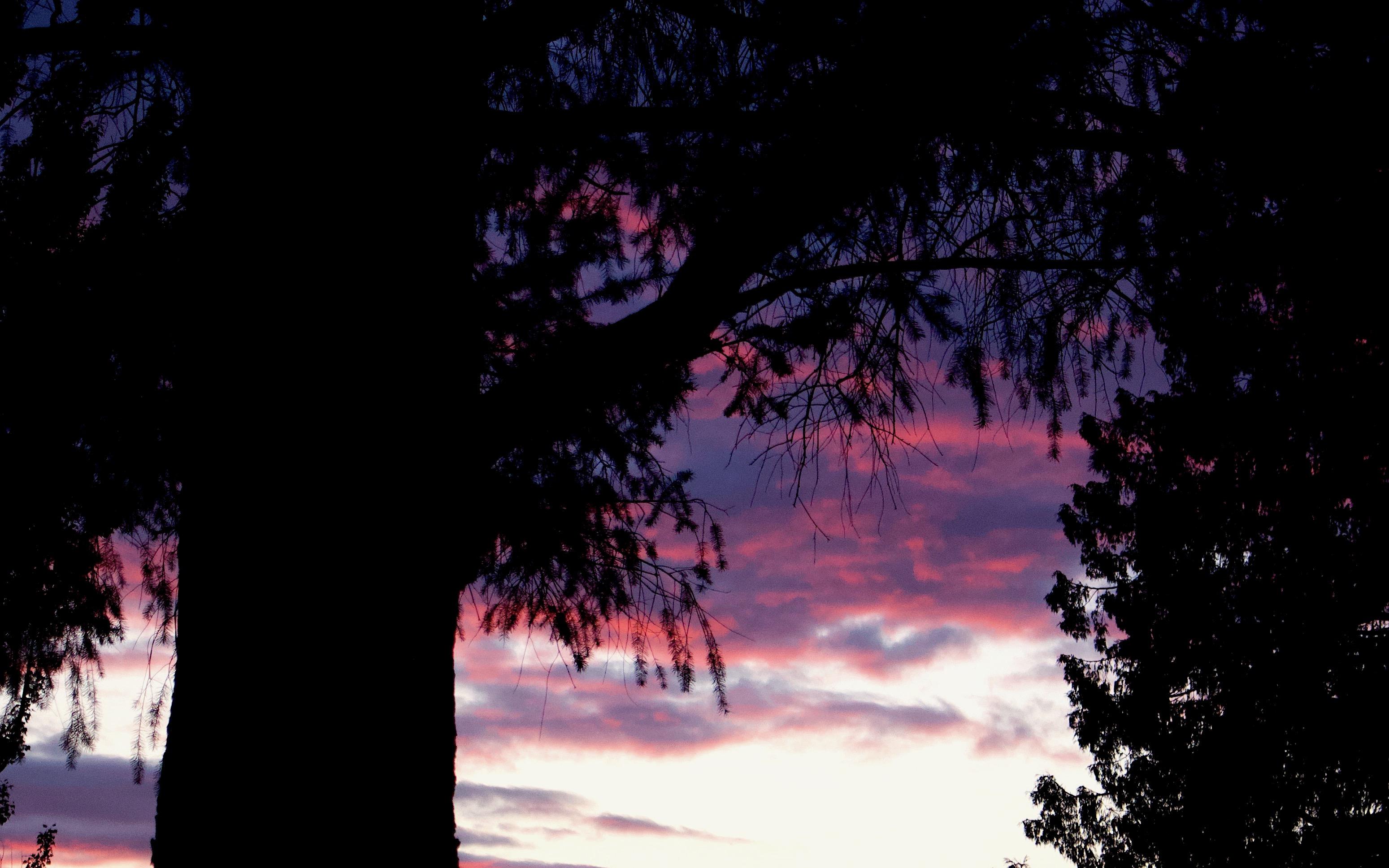 sunset510182