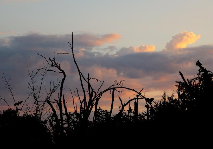 sunset523181