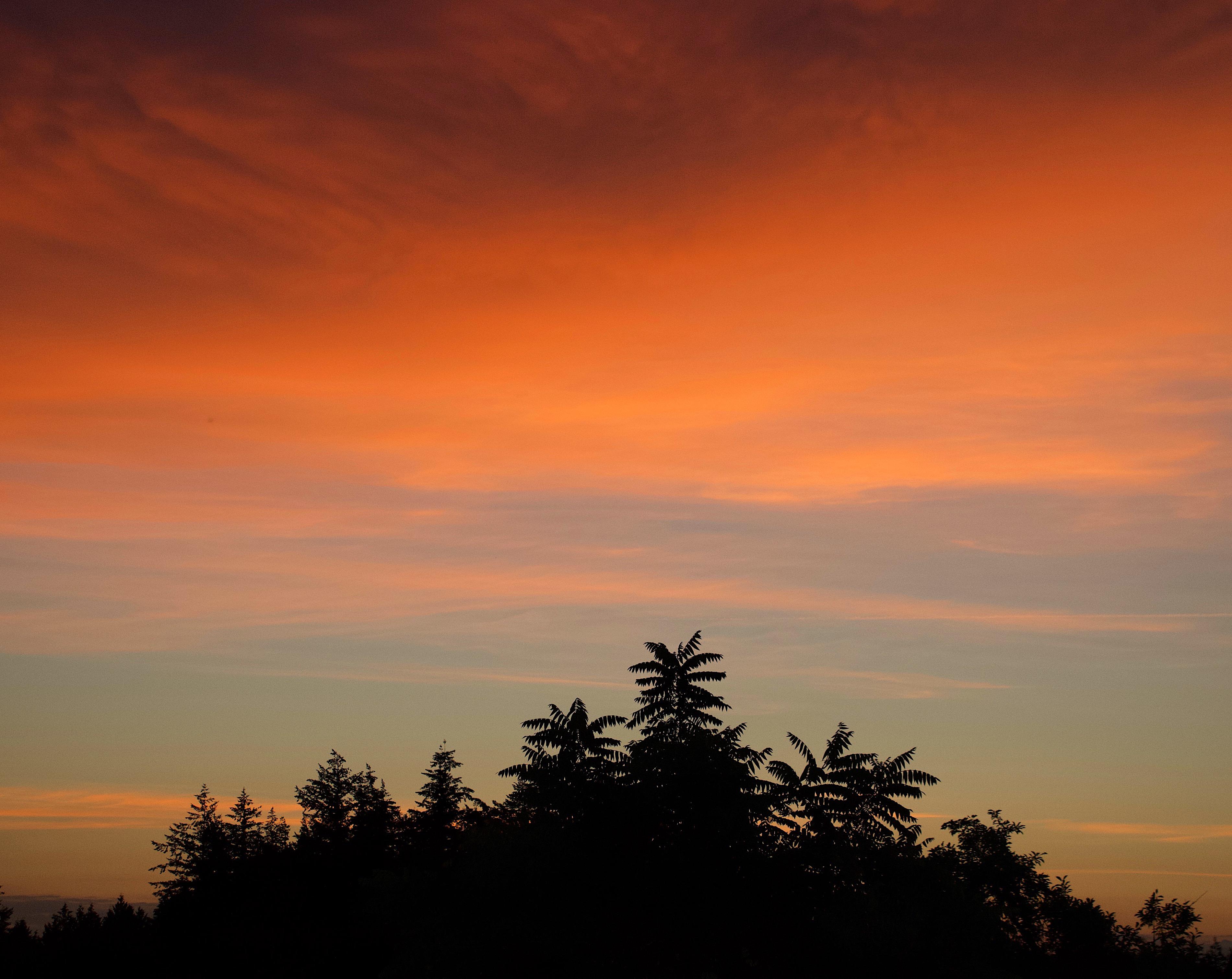 sunrise624181