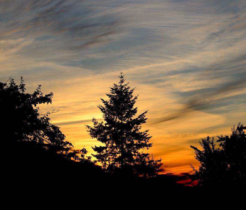 sunset623153