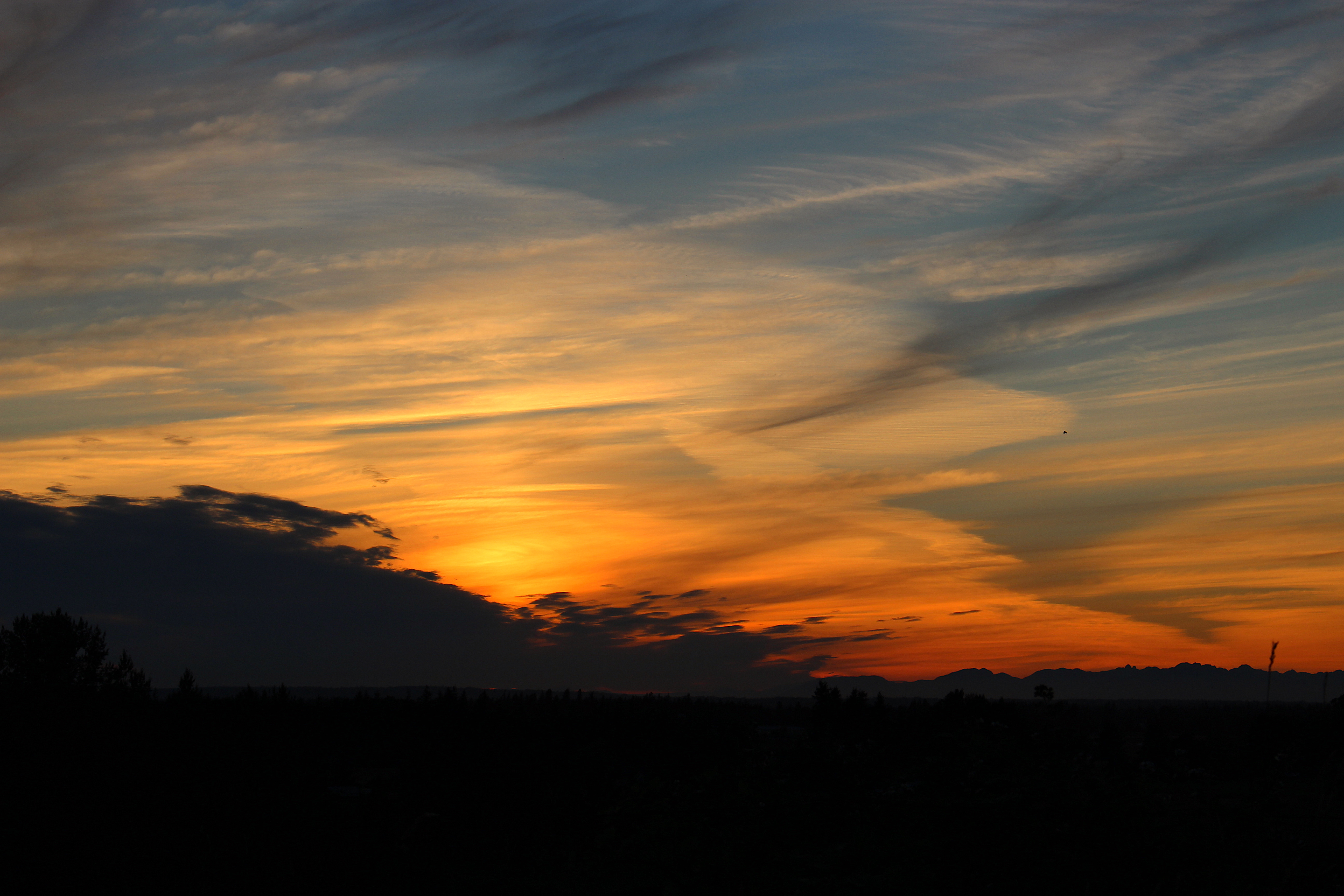 sunset823151
