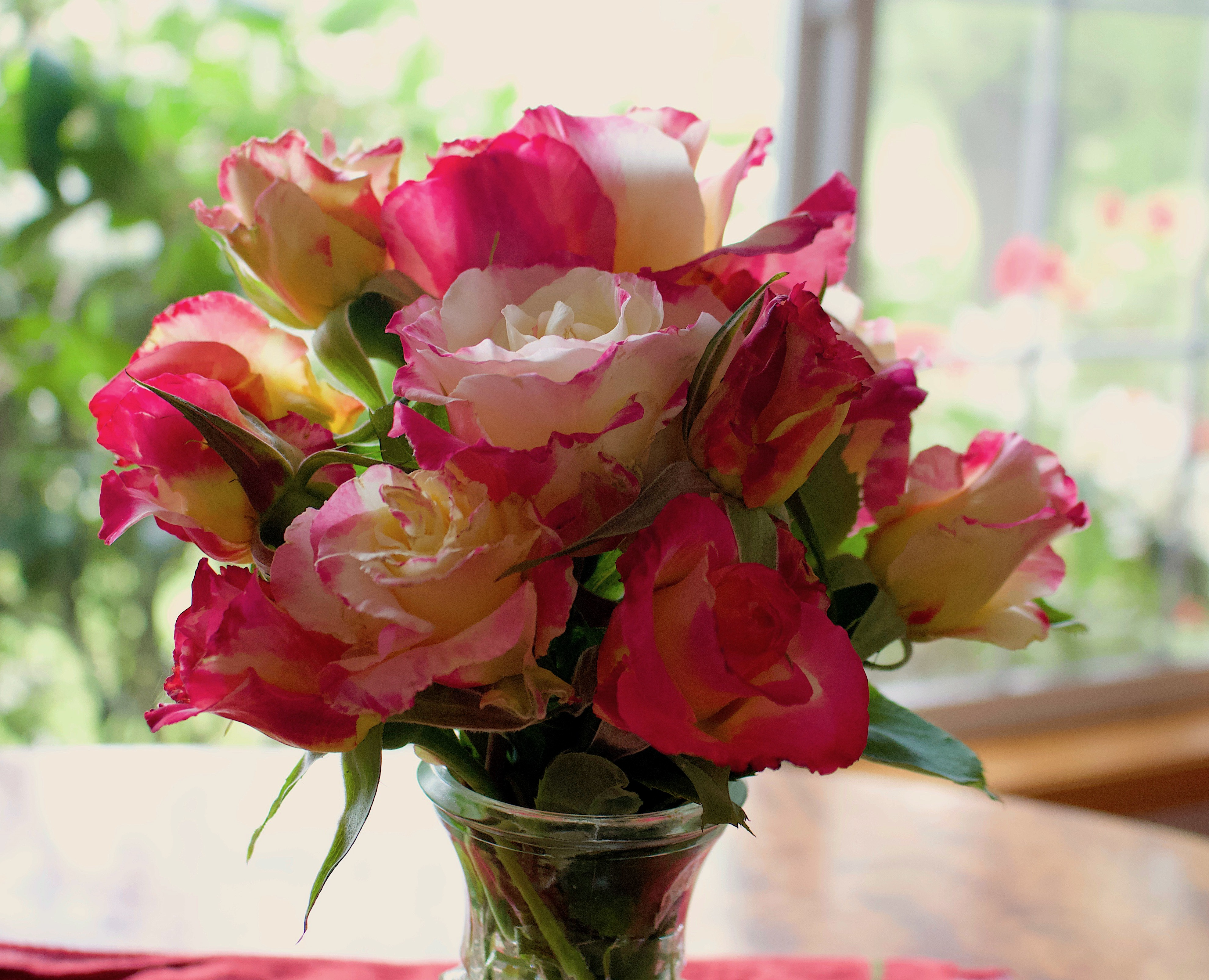 roses519183