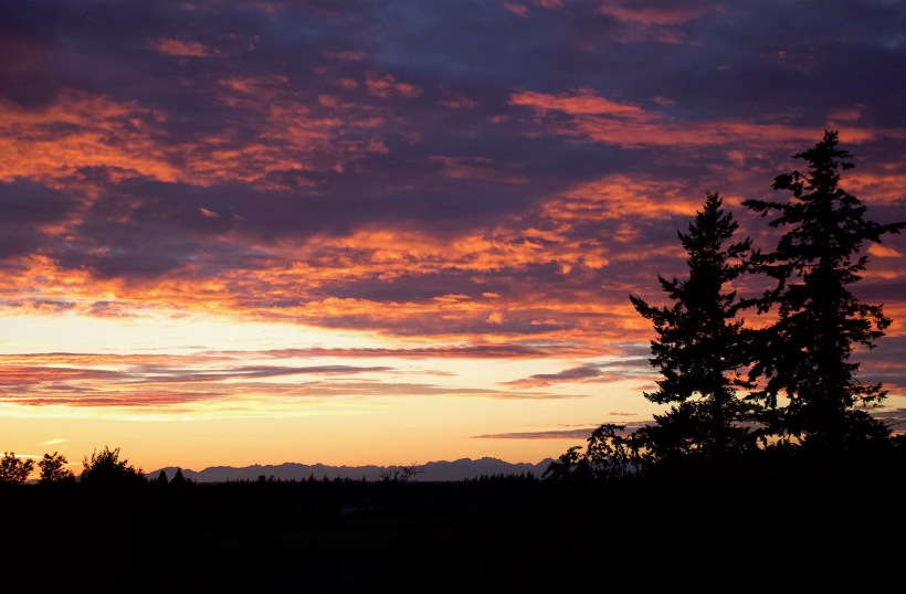 sunset72187
