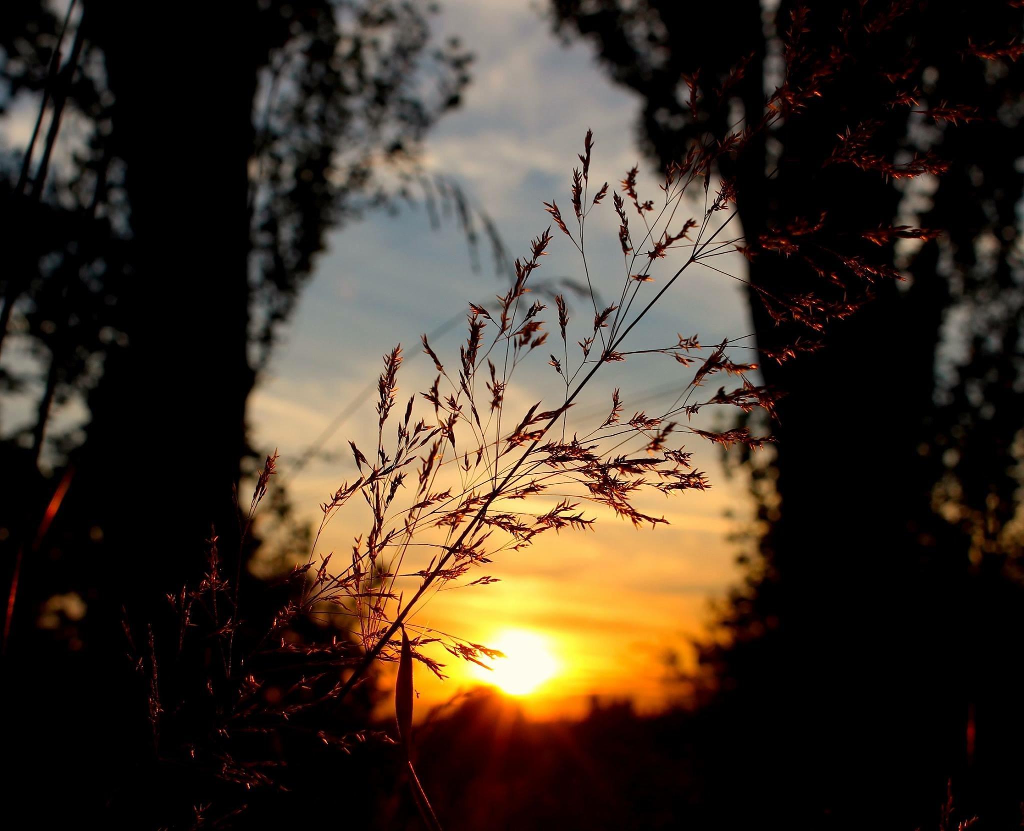 sunsetlight3