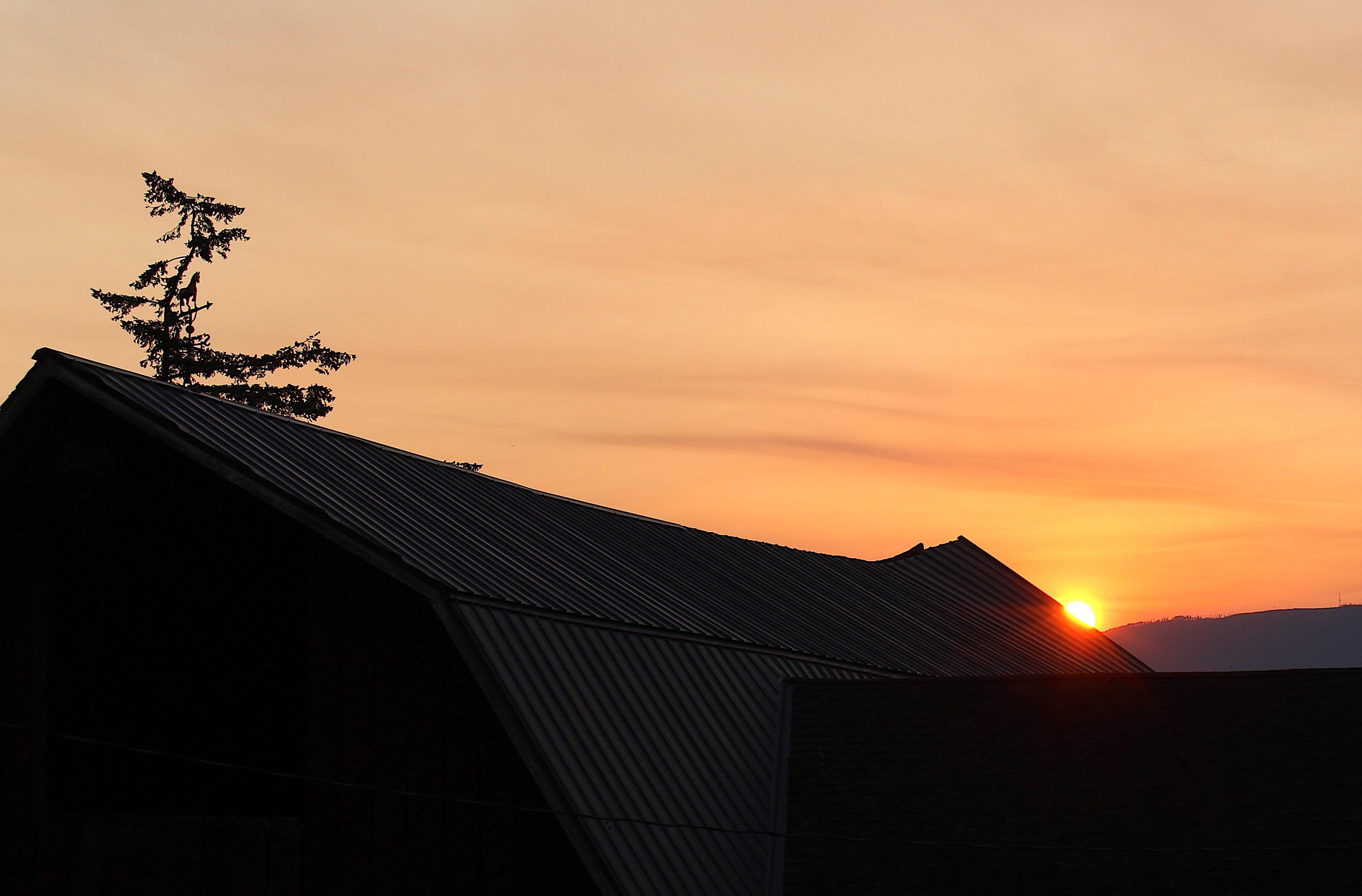sunrise89181