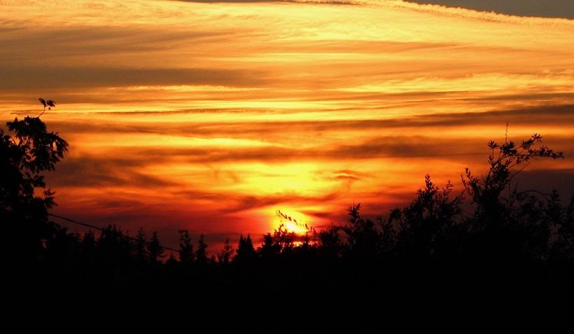 sunset818181
