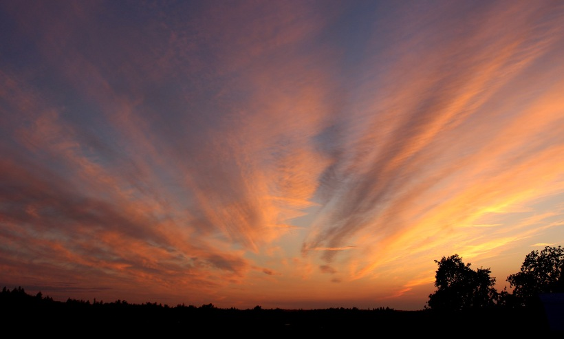 sunset830181