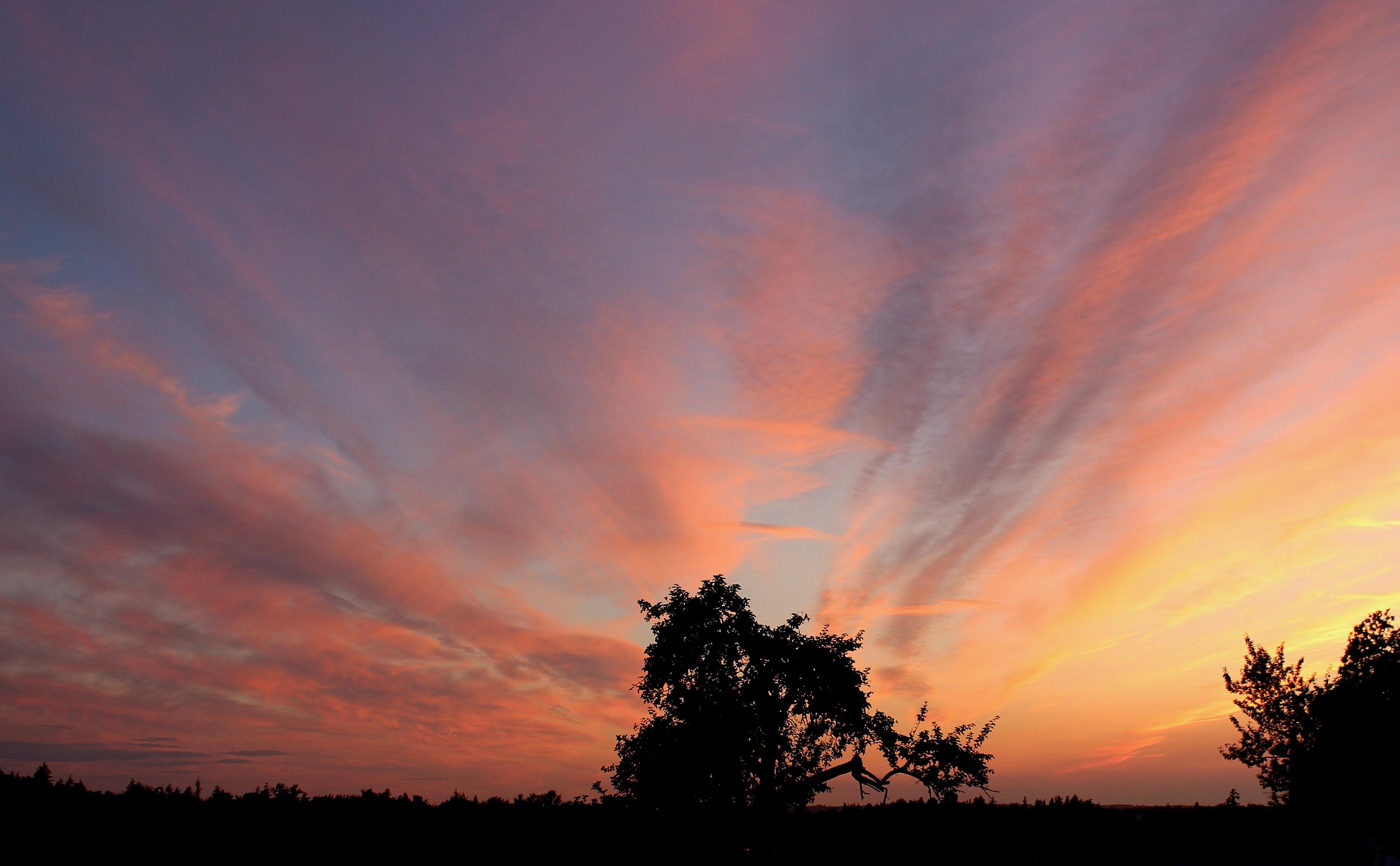 sunset830184