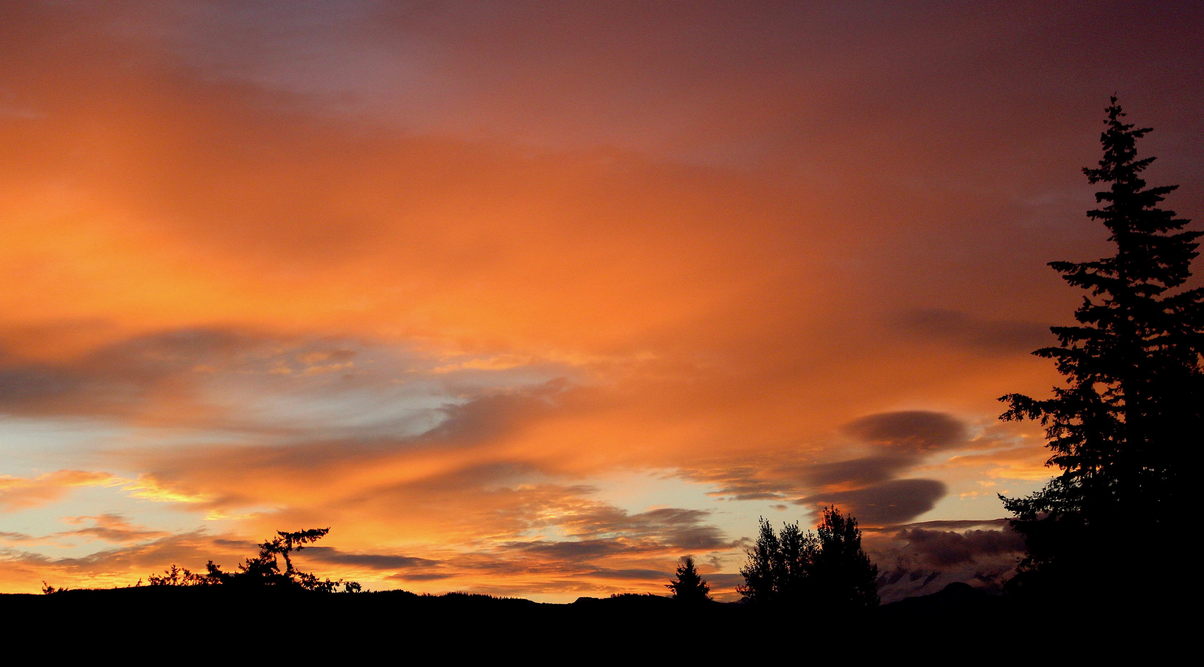 sunrise99181