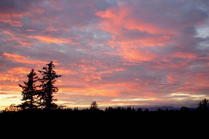 sunset72185