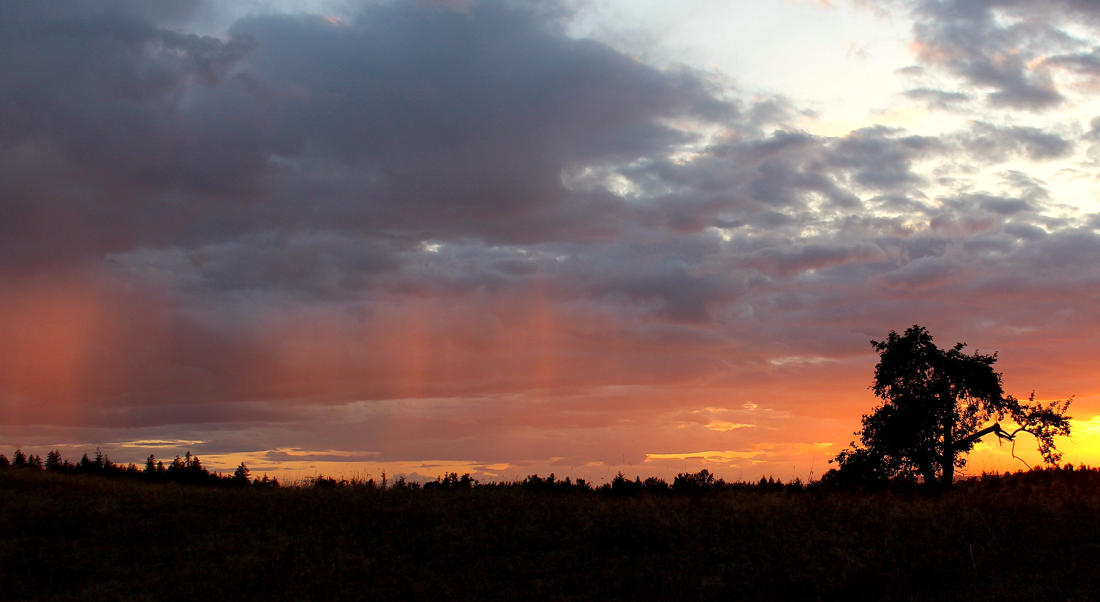 sunset910181