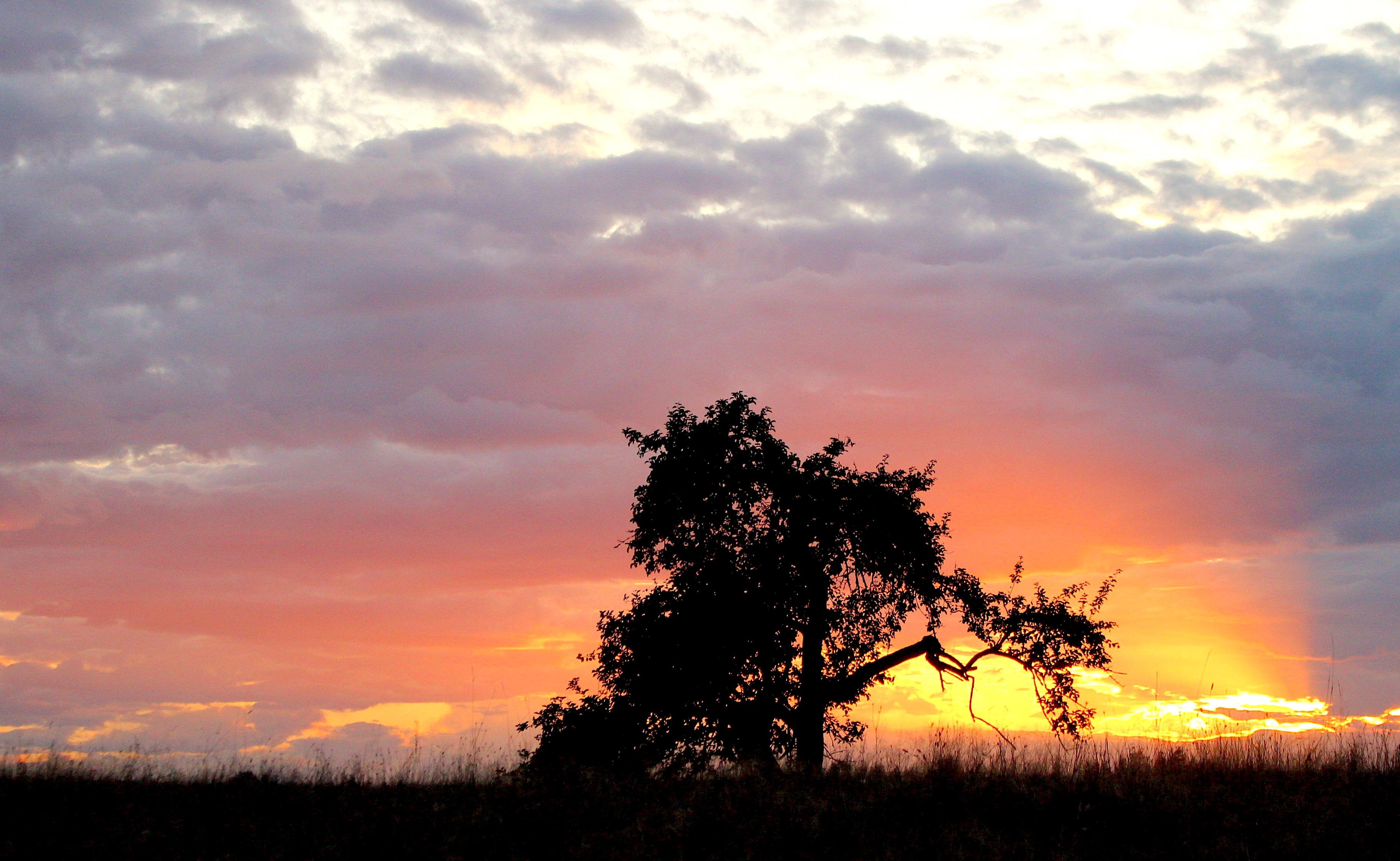 sunset910182