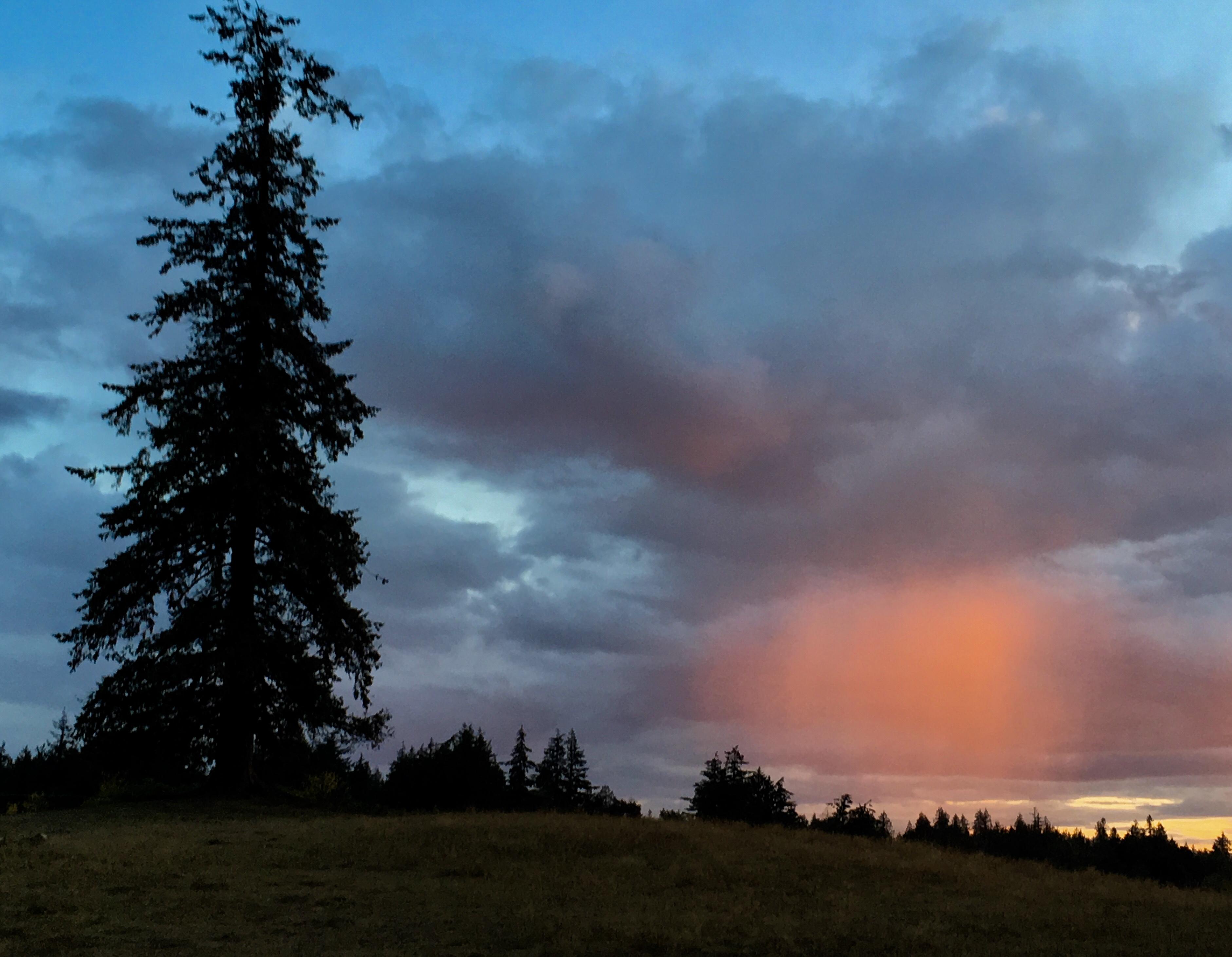 sunset910183