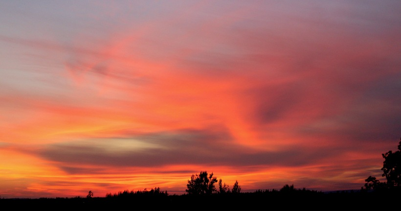 sunset91182