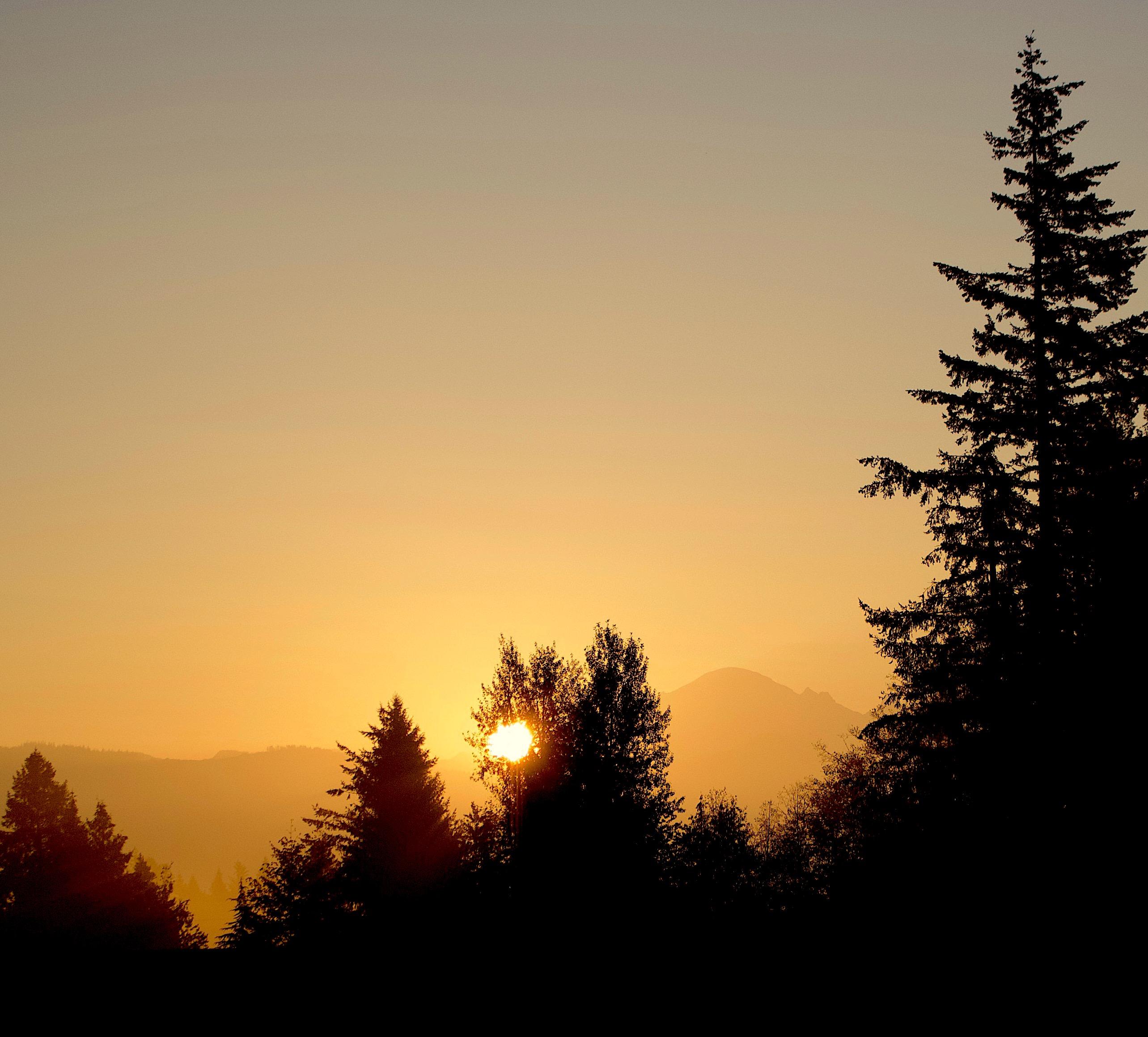 sunrise106181