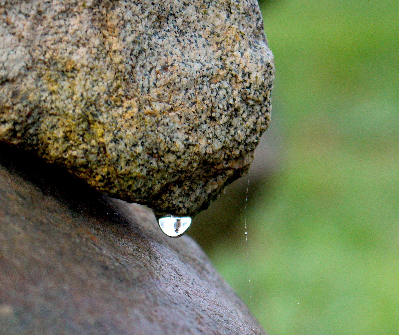 stoneweep