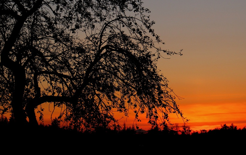 sunset111018