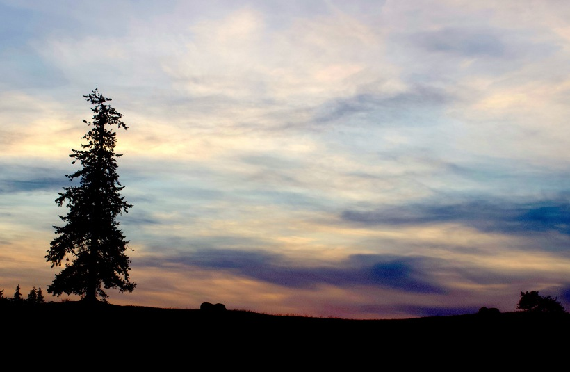 sunset1112181