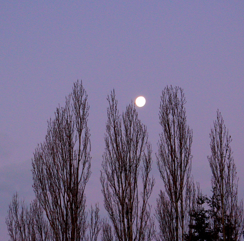 moonset122418